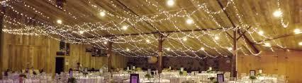 Fairy lights hire