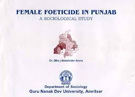 female foeticide essay female foeticide essays termpaperwarehouse com