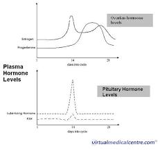 Fsh Levels Menopause Chart 62 Extraordinary Pregnancy Hormones Graph