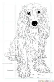 30 Ways To Draw Dogs Kleurplaten Konst Djur En Pyssel
