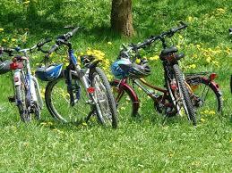Bildergebnis für Heide Fahrradfahren Bilder