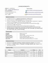 40 Year Experience Resume Format For Java Developer Earpodco Mesmerizing Experience Java Resume