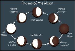 Phases Of The Moon Chart For Kids Oreo Moon Phase Project Do It And How