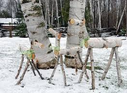 birch trees transform into reindeer
