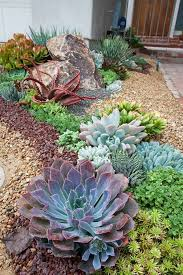 Small Picture 44 best Desert Landscaping images on Pinterest Landscaping ideas