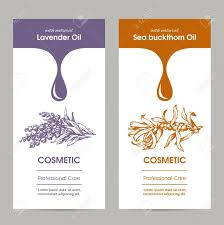 Cosmetic Label Design Template Vector Set Of Templates Packaging Cosmetic Label Banner Poster