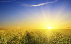 Image result for sunshine images free