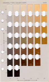 10 Year Page Munsell Color Chart Coffee According To