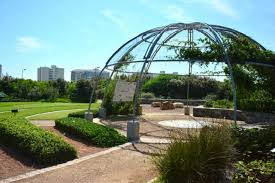 green point urban park in cape town