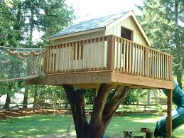 Image Treehouse Designs Creator House Ideas Online How To Build Simple Treehouse For Kids Good Trees Tree