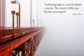Bridge Quotes Funny