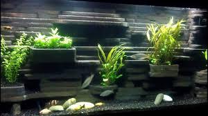 fish tank background diy gallon aquarium you beautiful images