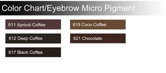 Eyebrow Pigment Color Permanent Makeup Kit China Pigment