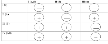 Методы определения групп крови При помощи стандартных сывороток  Получение стандартных сывороток