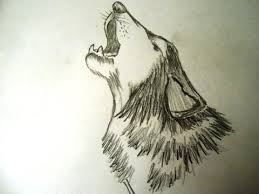 wolf howling drawing head.  Head How To Draw A Wolf Head And Face Step By For Kids Easy Way  YouTube Throughout Wolf Howling Drawing Head I