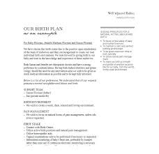 The Bump Birth Plan Planned C Section Birth Plan Template Baby Gallery Best