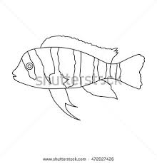 Small Picture Cichlid Animal Coloring Pages Farm Animal Coloring Pages