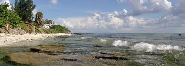 Point Of Rocks A Hidden Jewel On Siesta Key