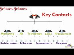 Johnson And Johnson Org Charts Report Orgchartcity Youtube