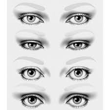 try these makeup tips for your eye shape whether you have a round eye shape almond eye shape or narrow eye shape