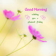 Pleasant Good Morning Quotes Best Of Good Morning Wishing You A Pleasant Friday Pictures Photos And