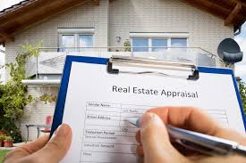 Fresh Essays   research process paper in real estate