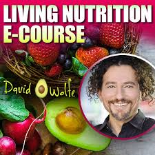 holistic nutrition with david avocado wolfe