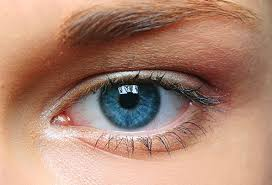 Iris Color Chart What Eye Color And Shape Say About Your Health