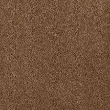 Shop Carpet at Lowescom