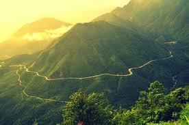 Lai Châu: Chiêm ngưỡng vẻ đẹp mờ ảo trên đỉnh Ô Quy Hồ - Tổng cục Du lịch