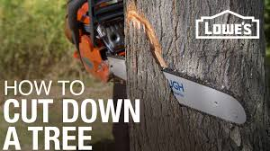 how to cut down a tree youtube