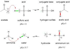 organic chemistry organic chemistry help acid base 2