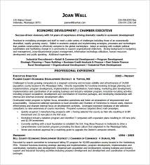 Executive Resume Templates Word Fascinating Executive Resume Template 28 Free Word Excel PDF Format Download