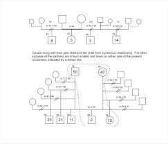 On The App Store A Family Template For Free Mac Genogram Purly Co