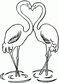 Small Picture Pink Flamingo Coloring Pages Coloring Home