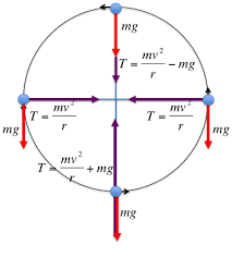 twod physicsabove  free body diagram for a tethered object spinning in a vertical plane