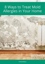 8 Ways to Treat Mold Allergies in Your Home