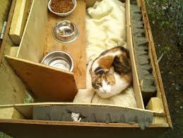 Outdoor cat shelter  Outdoor cats and Outdoor cat houses on Pinterest