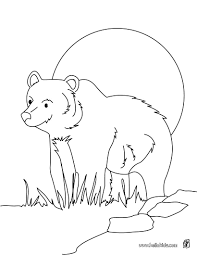 Cute Animal Coloring Sheets To Print Out Wild For Girls Printable