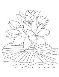 Small Picture Free Printable Lotus Coloring Pages For Kids