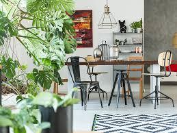 indoor gardening. Indoor Gardening E