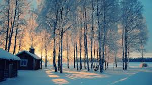 winter background images hd. Plain Winter Download And Winter Background Images Hd