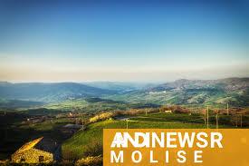 ANDI News Molise - ANDI