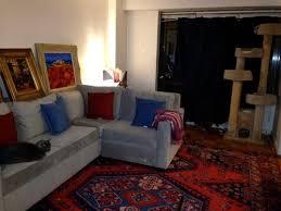 rug ideas to go with my light grey sofa