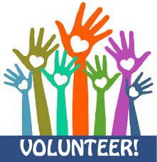 Image result for volunteer opportunities