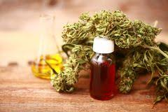 Image result for FREE pics of cbd oil