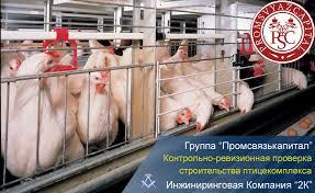Контрольно ревизионная проверка в рамках строительства  контрольно ревизионная проверка для птицекомплекса в Курской области