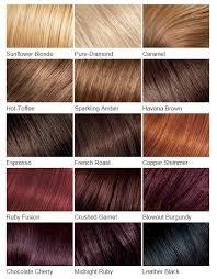 Hair Color Charts Know Your Next Shade Hairstylo