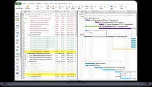Gantt Chart Mpp Project Plan 365