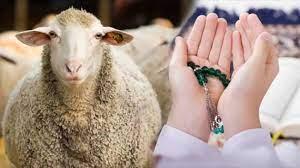 Kurban kesilirken okunacak dualar nelerdir? Teşrik Tekbiri Arapça ve Türkçe  okunuşu... - DİNİ BİLGİLER Haberleri